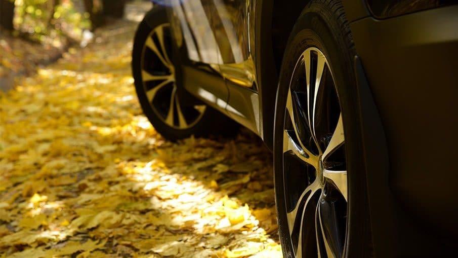 pneu-automne